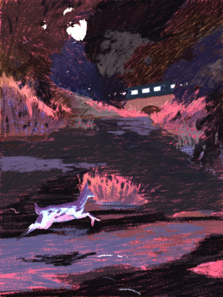 Deer Running Illustration by Xiao